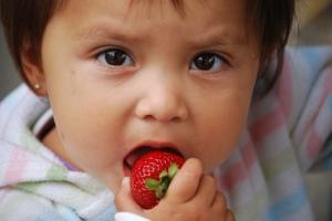kids love fruit
