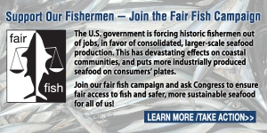 fairfish
