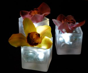 Lighted Orchid Centerpieces